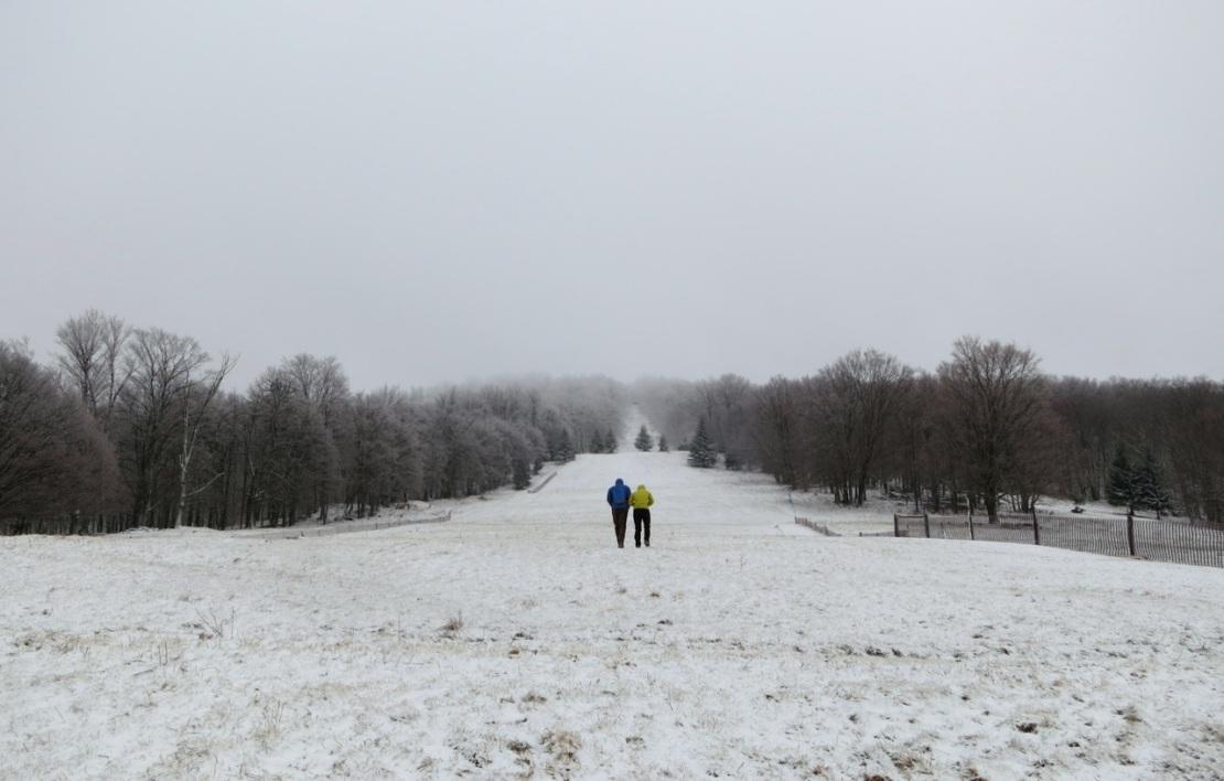 white grass cross country ski slope