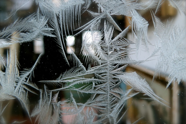 frost crystals on window