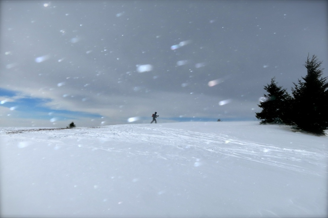 cross country skiing in blowing snow